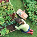 Top 10 Yard Work and Gardening Tips to Keep You Free of Injury